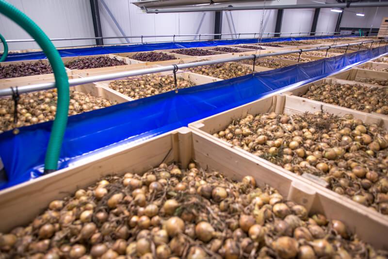 afdichtkanaal aardappel uien bewaring