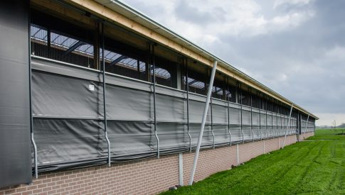ventilation agricultural cowshed